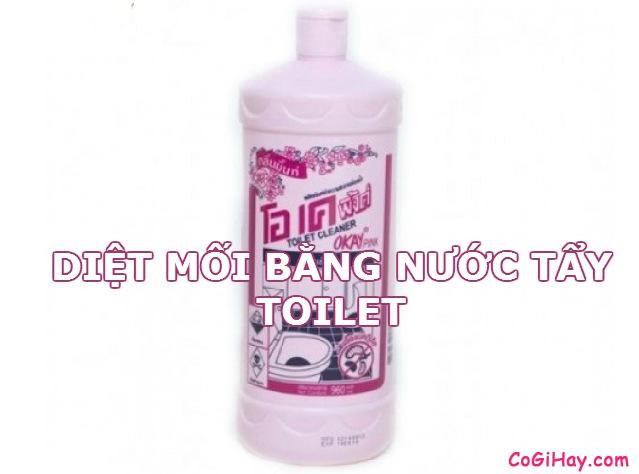 diệt mối bằng nước tẩy toilet