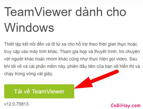 tải bộ cài đặt teamviewer