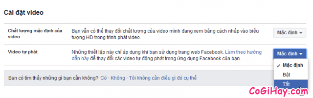 ớng dẫn tắt chế độ tự động phát video clip cho Facebook + Hình 4