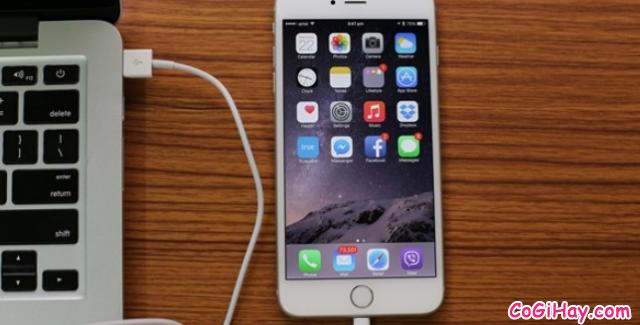 Sao lưu dữ liệu từ điện thoại iPhone, iPad sang Laptop với MobiMover Free + Hình 2
