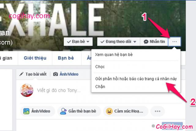 Mách bạn cách báo cáo Report Facebook giả mạo, lừa đảo nhanh nhất + Hình 8