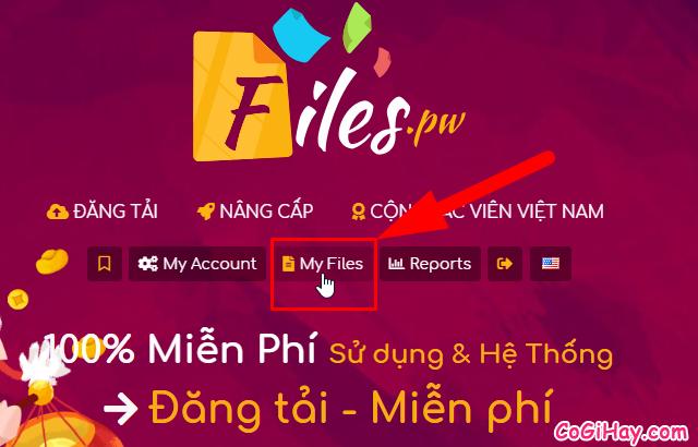 Cách kiếm tiền online bằng cách upload video files trên Filespw + Hình 21