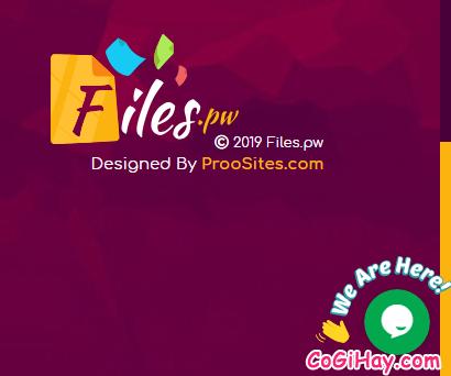 Cách kiếm tiền online bằng cách upload video files trên Filespw + Hình 28