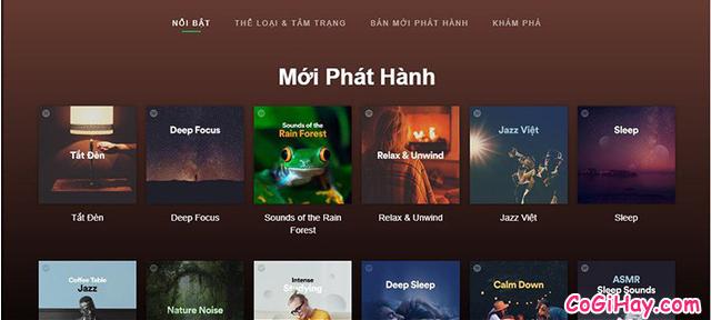 Hướng dẫn xóa bộ nhớ Cache cho Spotify trên iPhone, iPad 6