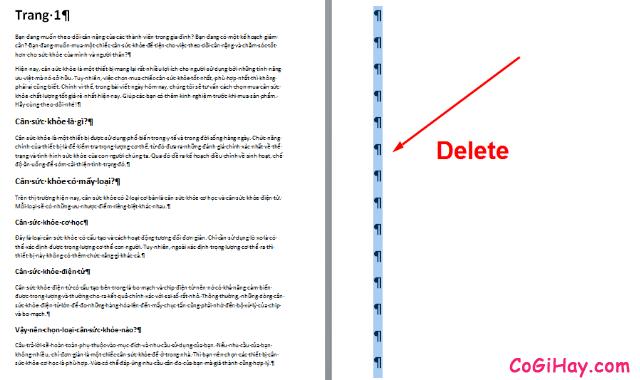 Hướng dẫn xóa trang trong phần mềm soạn thảo văn bản Word + Hình 10