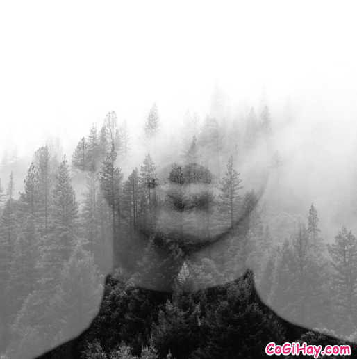 Snapseed - Một vài mẹo chỉnh sửa ảnh đẹp cho người mới + Hình 10
